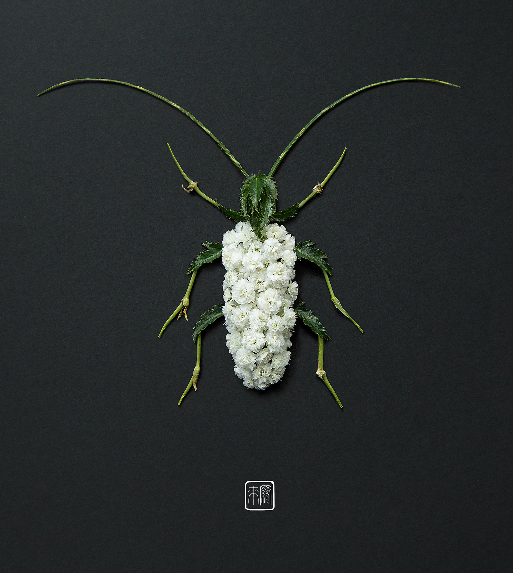 Flower Petals and Stems Transform into Animals and Insects in Inventive new Arrangements