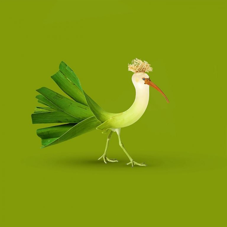 Crazy Mashups of Objects and Animals