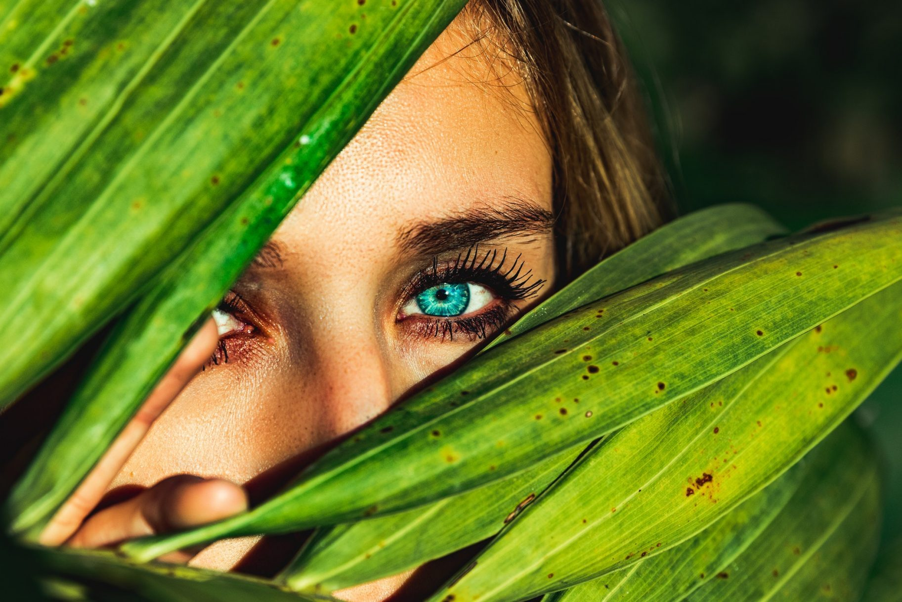 Breathtaking Photography – Week 12