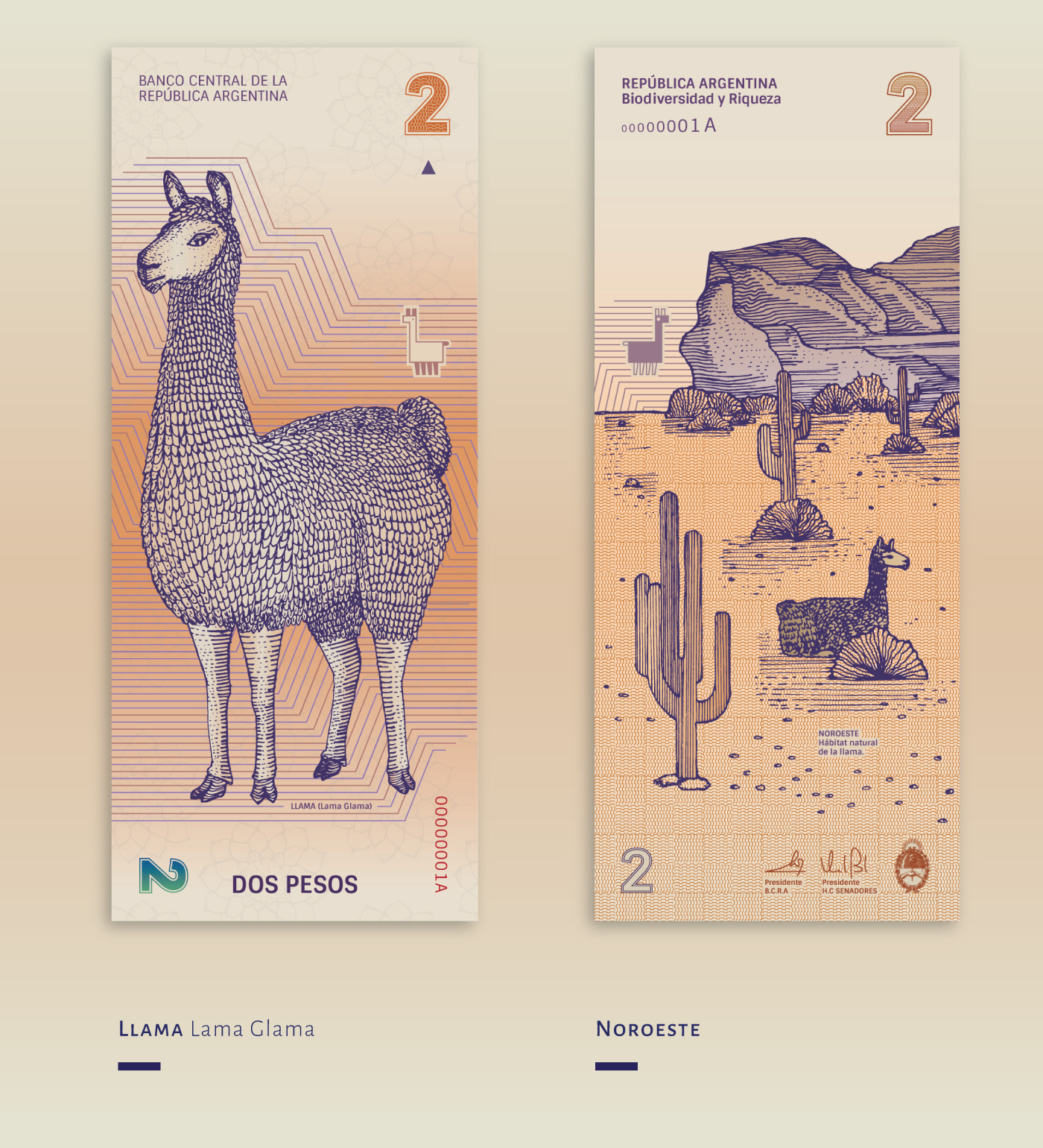 Redesign of the Argentinean Bills by Gilda Martini & Gabriela Lubiano