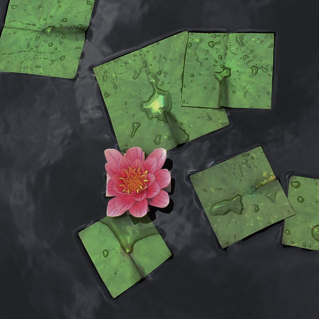 Bit Leaves: Square Flowers and Plants by Baku Maeda
