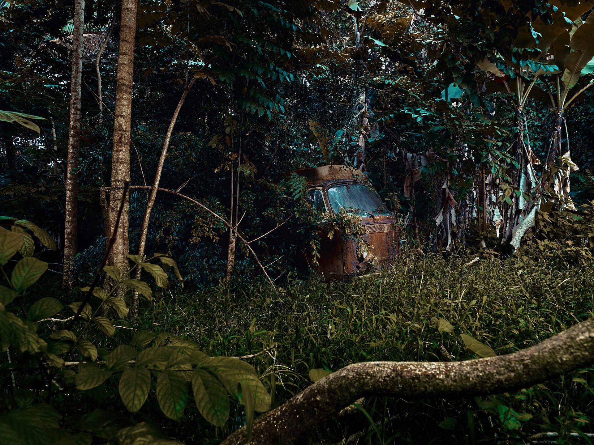 Nature Takes Over Abandoned Cars By Thomas Strogalski