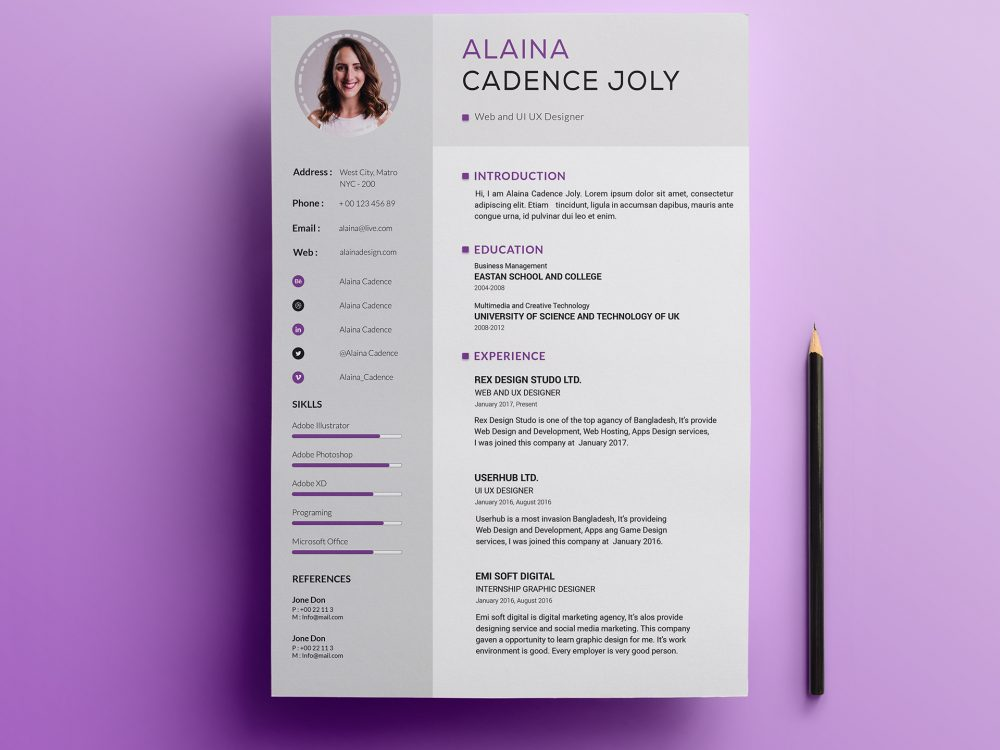 Clean Professional Resume Template Free